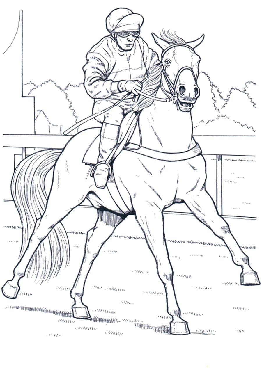 ausmalbilder pferd große sammlung 100 stück online drucken