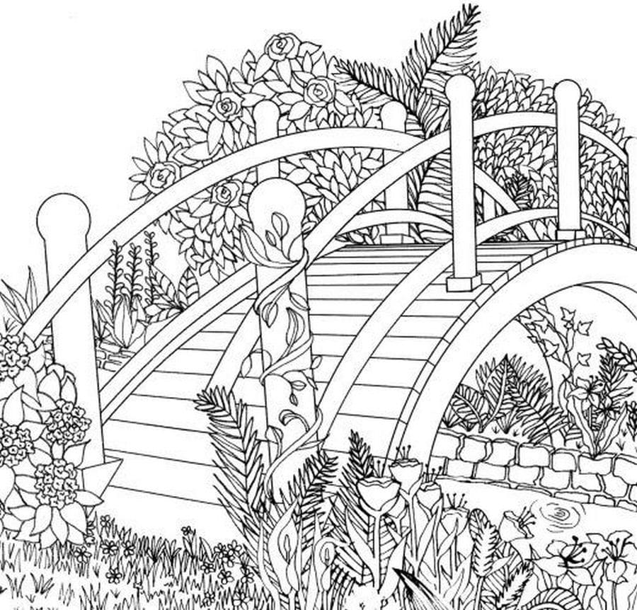 Coloring Pages Nature. Landscape, forest, mountains, sea ...