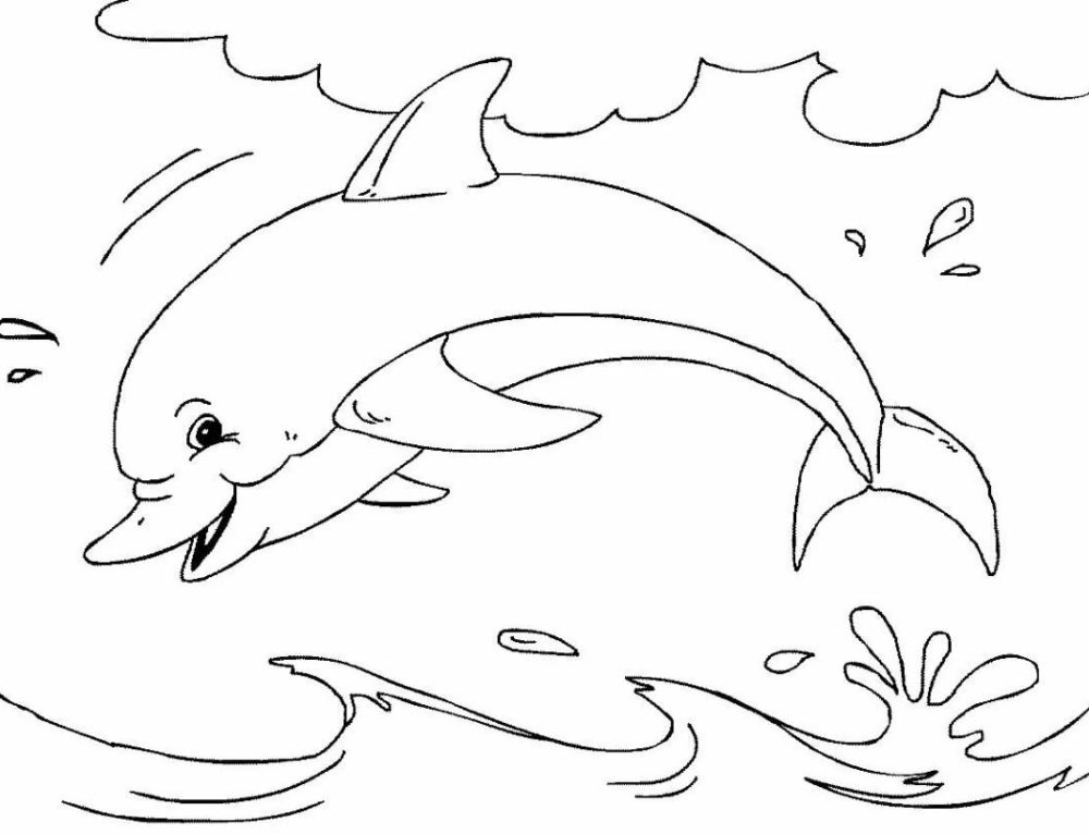 Dolphins Coloring Pages. 100 Pictures Free Printable