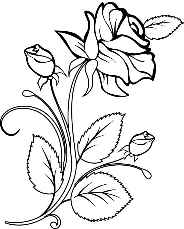 Roses Flowers Hearts Coloring Page - Free Coloring Pages Online | 795x640