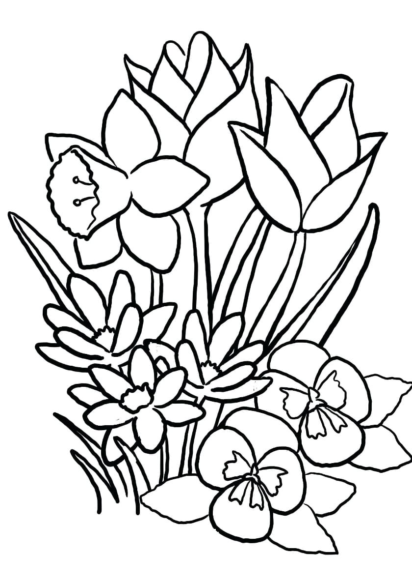 Coloriage Printemps. Imprimer gratuitement, 70 images