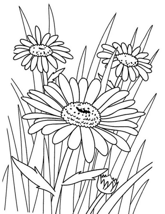 Spring Coloring Pages Color The Spring In The Brightest Colors