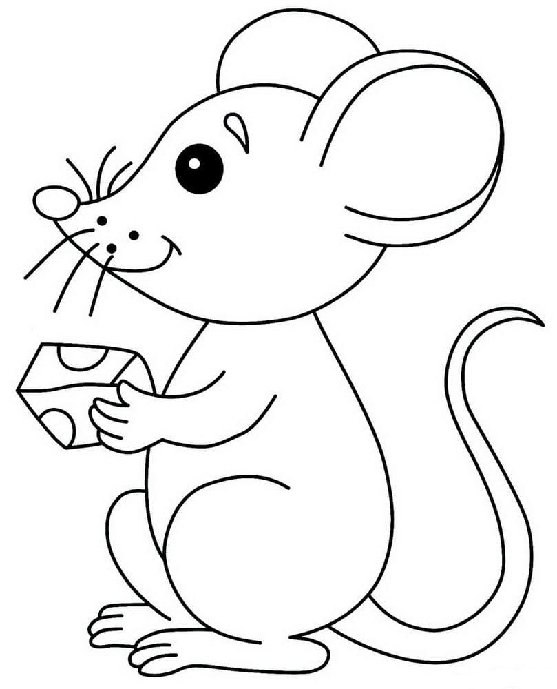 Coloring pages for kids 5 years. Print for free, 100 pictures