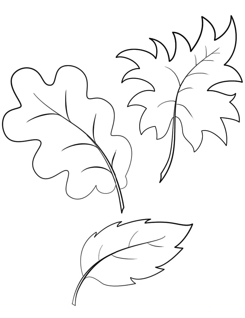 Coloring pages Autumn. Download or print for free