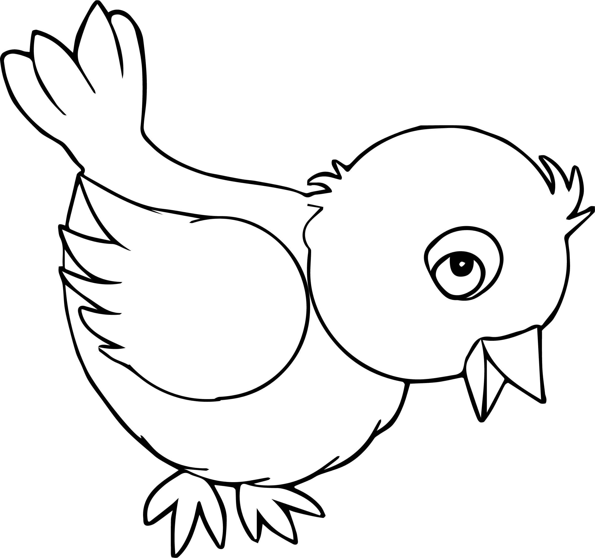 картинки птичек для раскраски заметили, что красотка