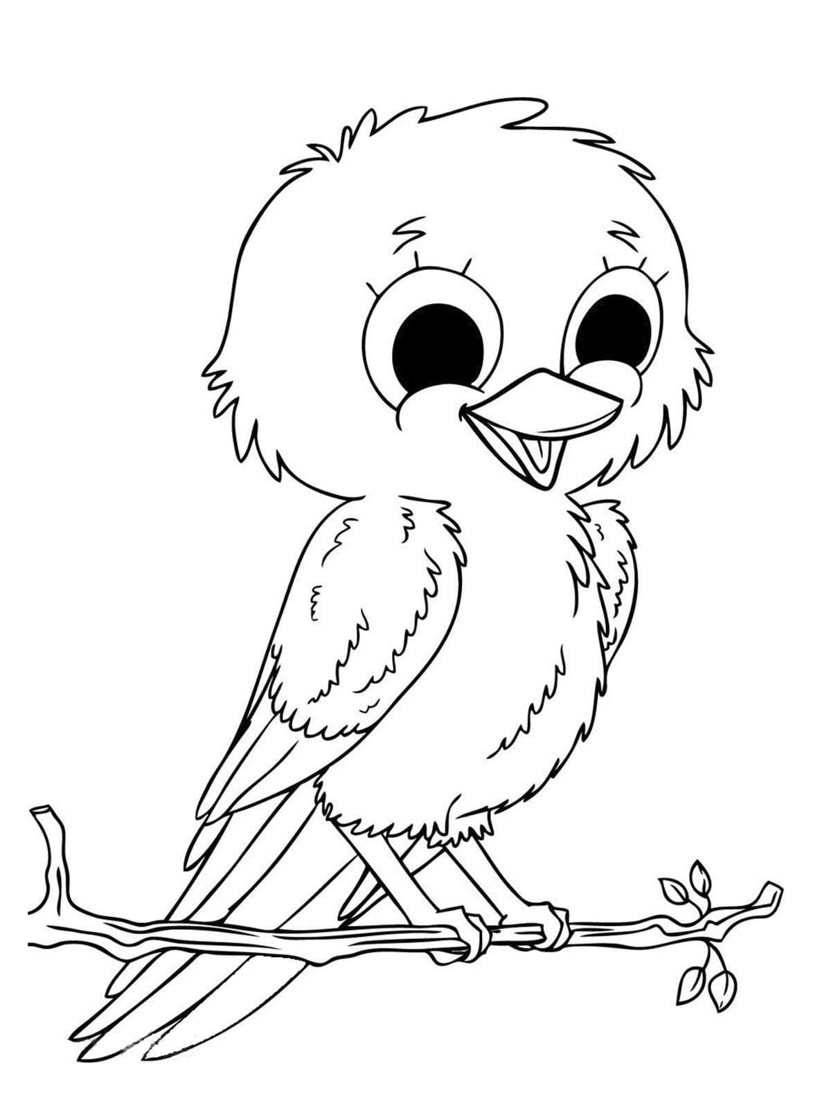 Раскраски Птицы. Скачайте или распечатайте бесплатно