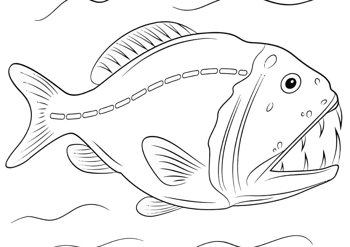 Картинки раскраски морские рыбы