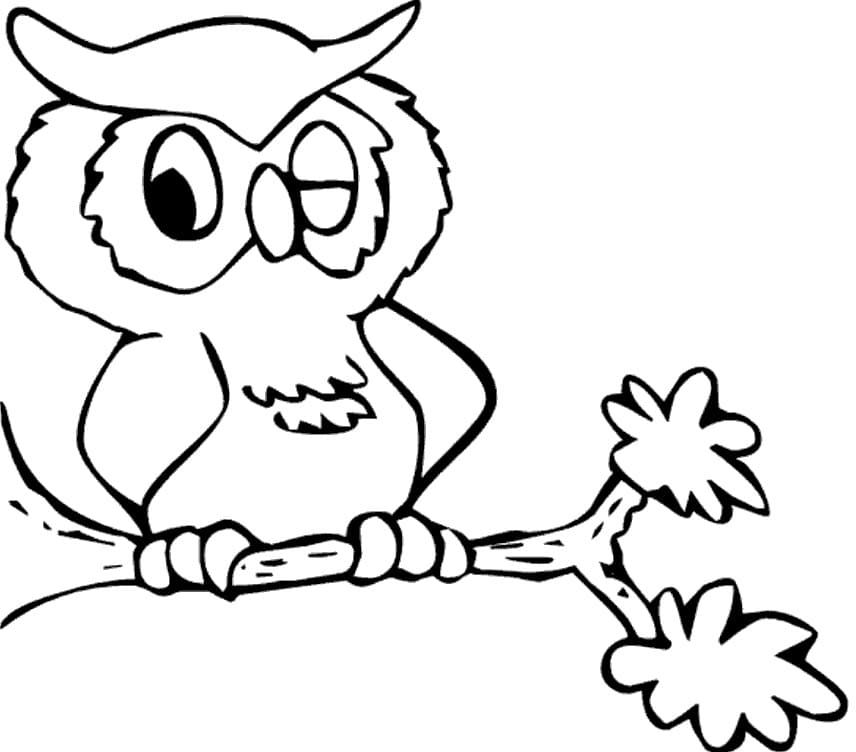 Owl Coloring Pages. 100 Birds of prey pictures for free