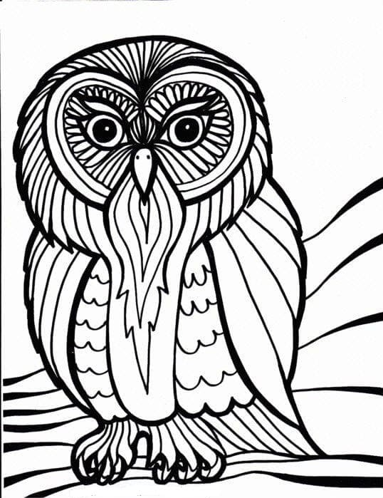 Раскраска филин сова невесте