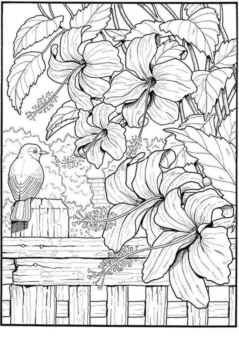 Scenery Coloring Pages For Adults 60 Pictures Free Printable