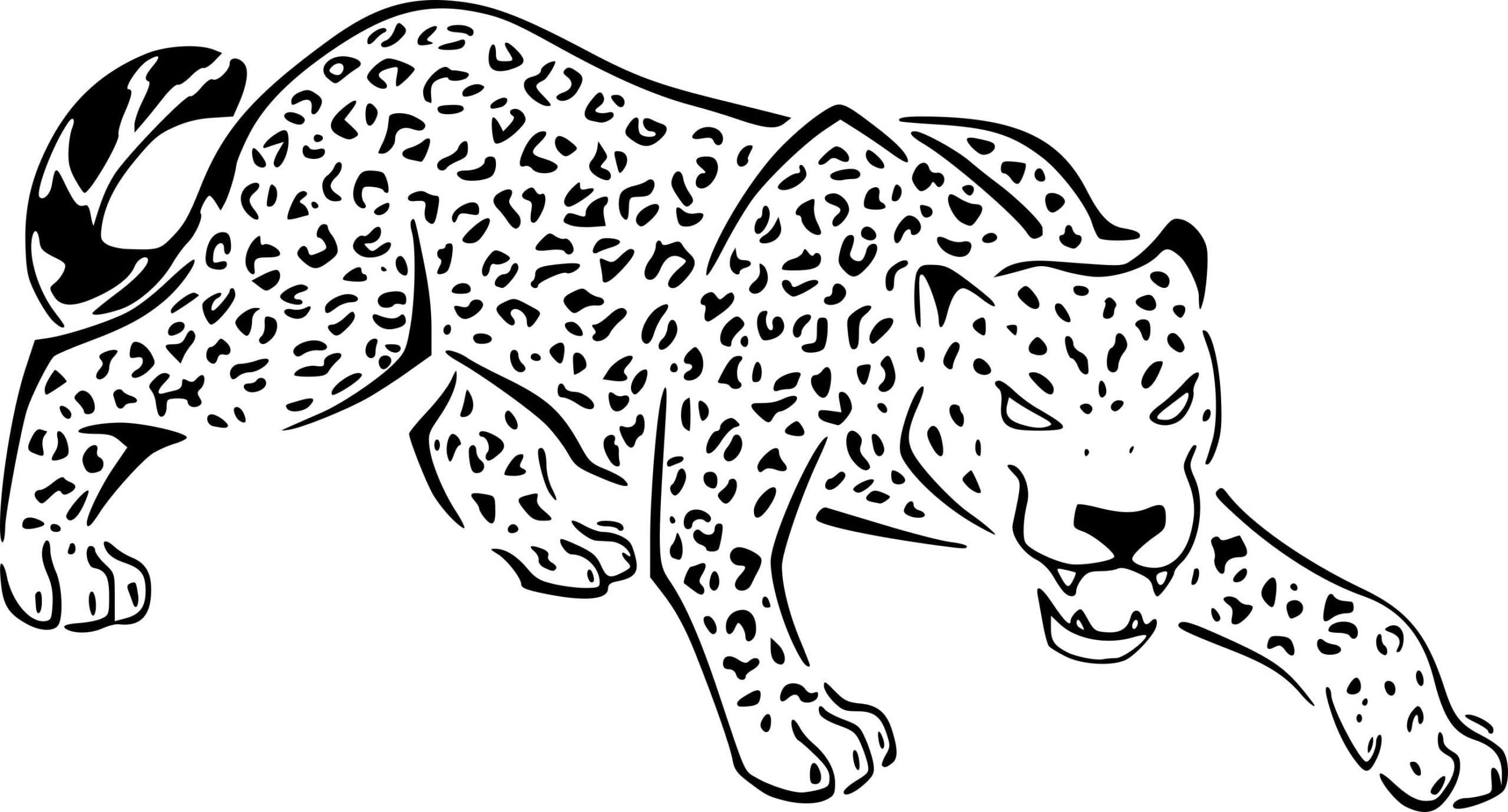 Ausmalbilder Gepard  30 Malvorlagen Kostenlos zum Ausdrucken