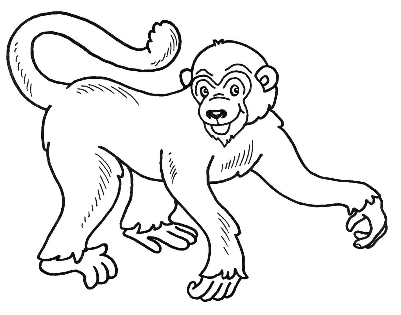 Ausmalbilder Affen  30 Malvorlagen Kostenlos zum Ausdrucken