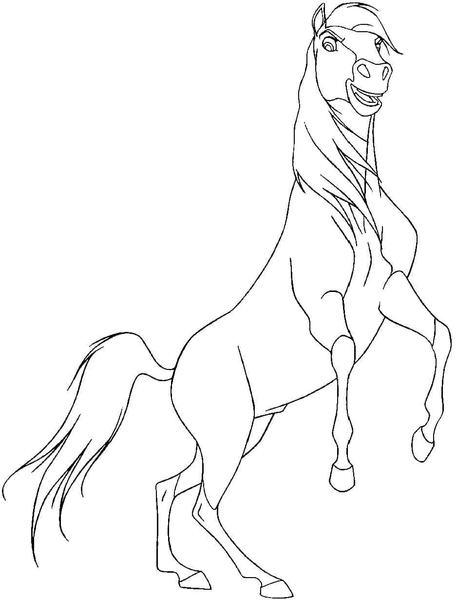 ausmalbilder pferde spirit  ausmalbild das pferd rain