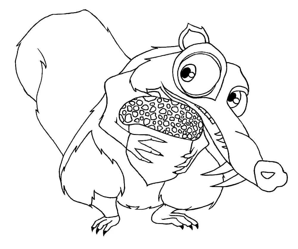 Ausmalbilder Eichhörnchen. 15 Bilder zum kostenlosen Drucken