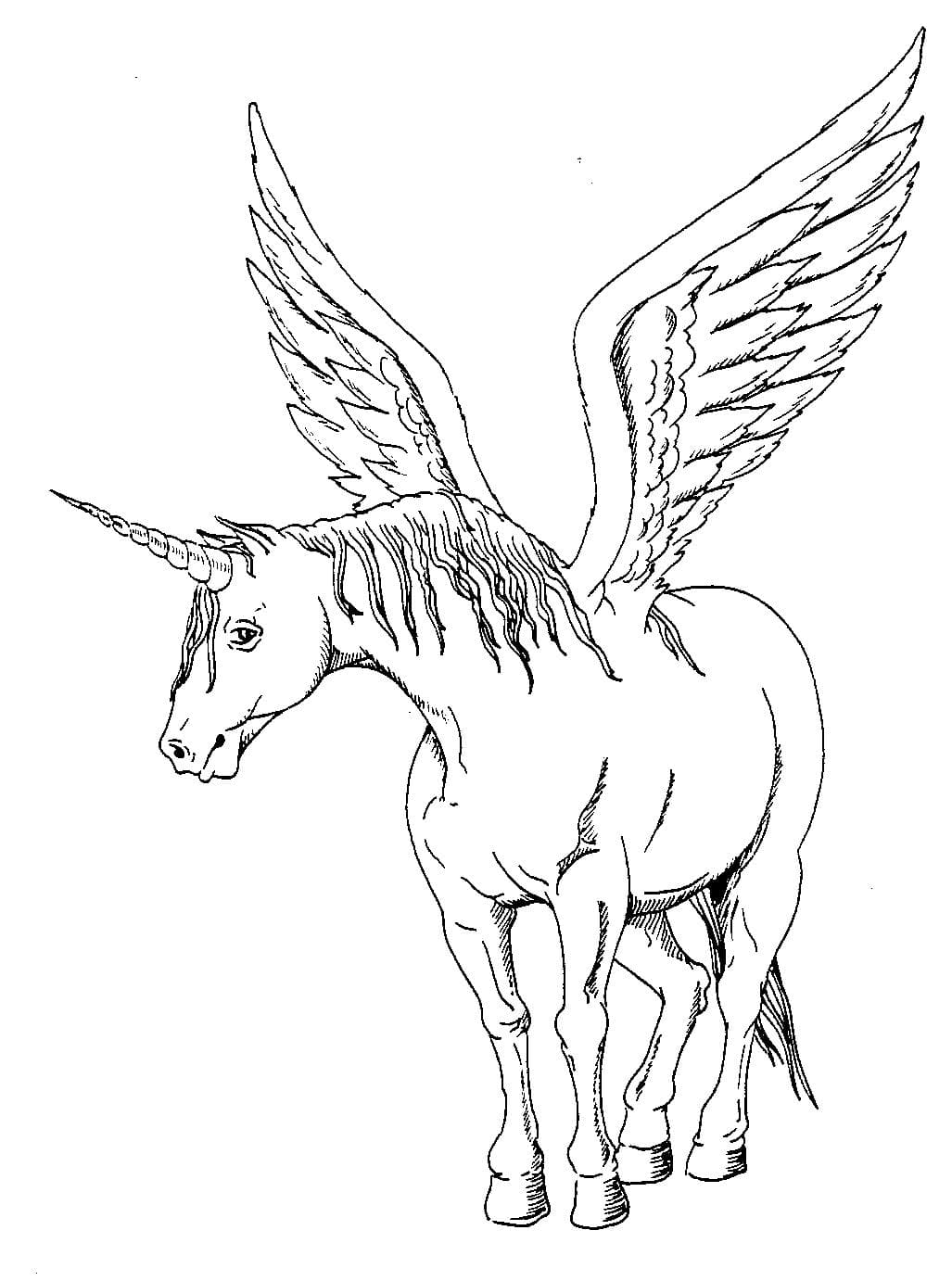 Psalm 100 kjv coloring pages ~ Coloring Pages Of Unicorns To Print : Coloring Pages ...