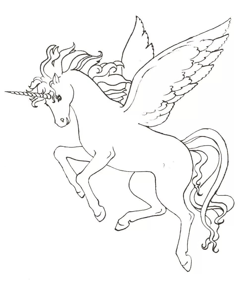 Unicorn Coloring Pages 100 Black