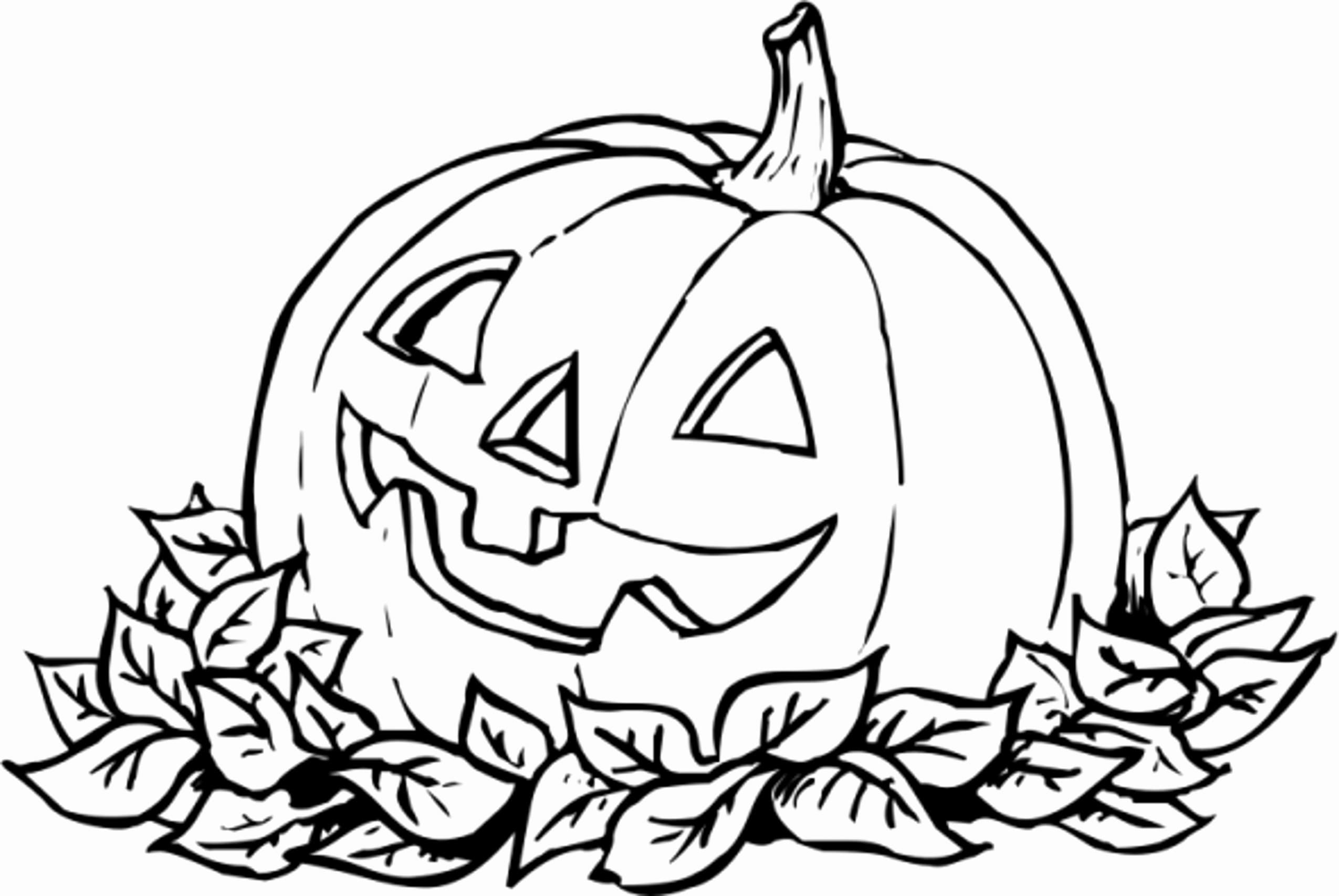 ausmalbilder halloween 120 neue bilder zum drucken