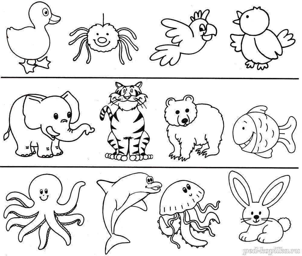 Март, картинки для ребенка 1 года развивающие распечатать