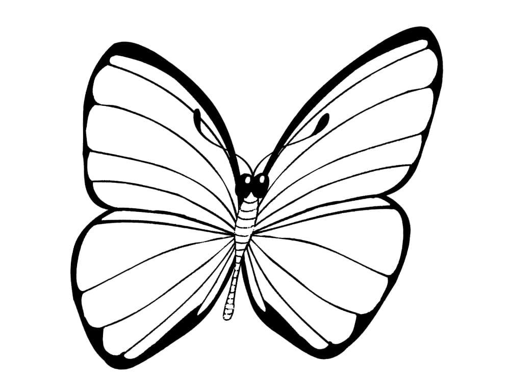 Farfalle da pagine da colorare per bambini, 100 immagini. Stampa gratis!