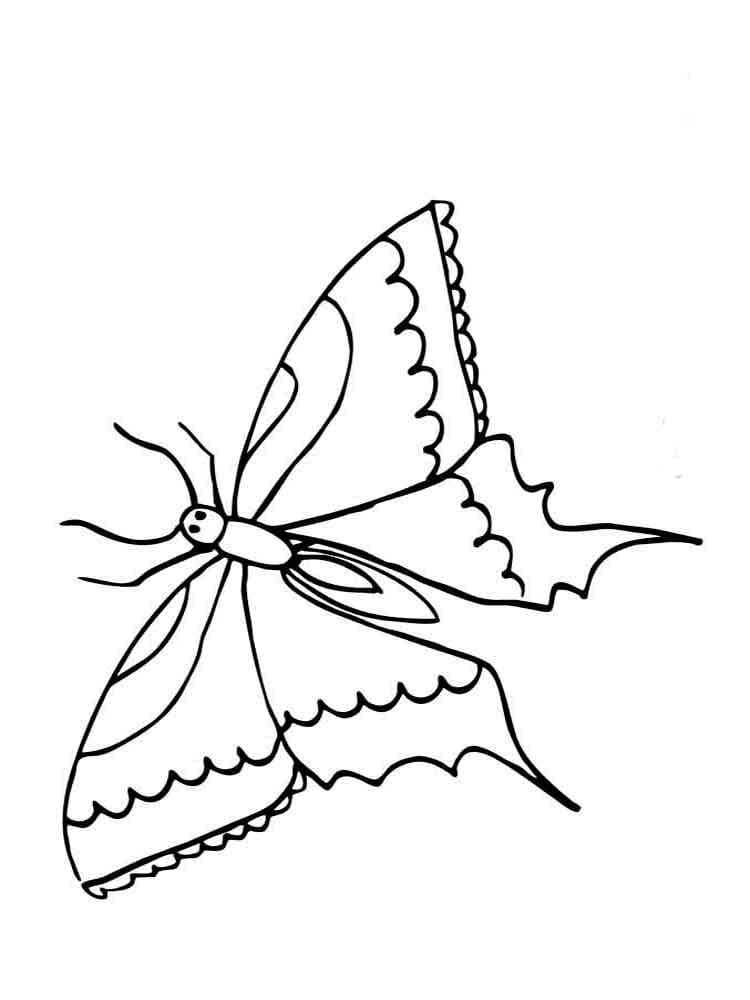 Butterfly Coloring Pages for Kids, 100 Images. Print for Free!