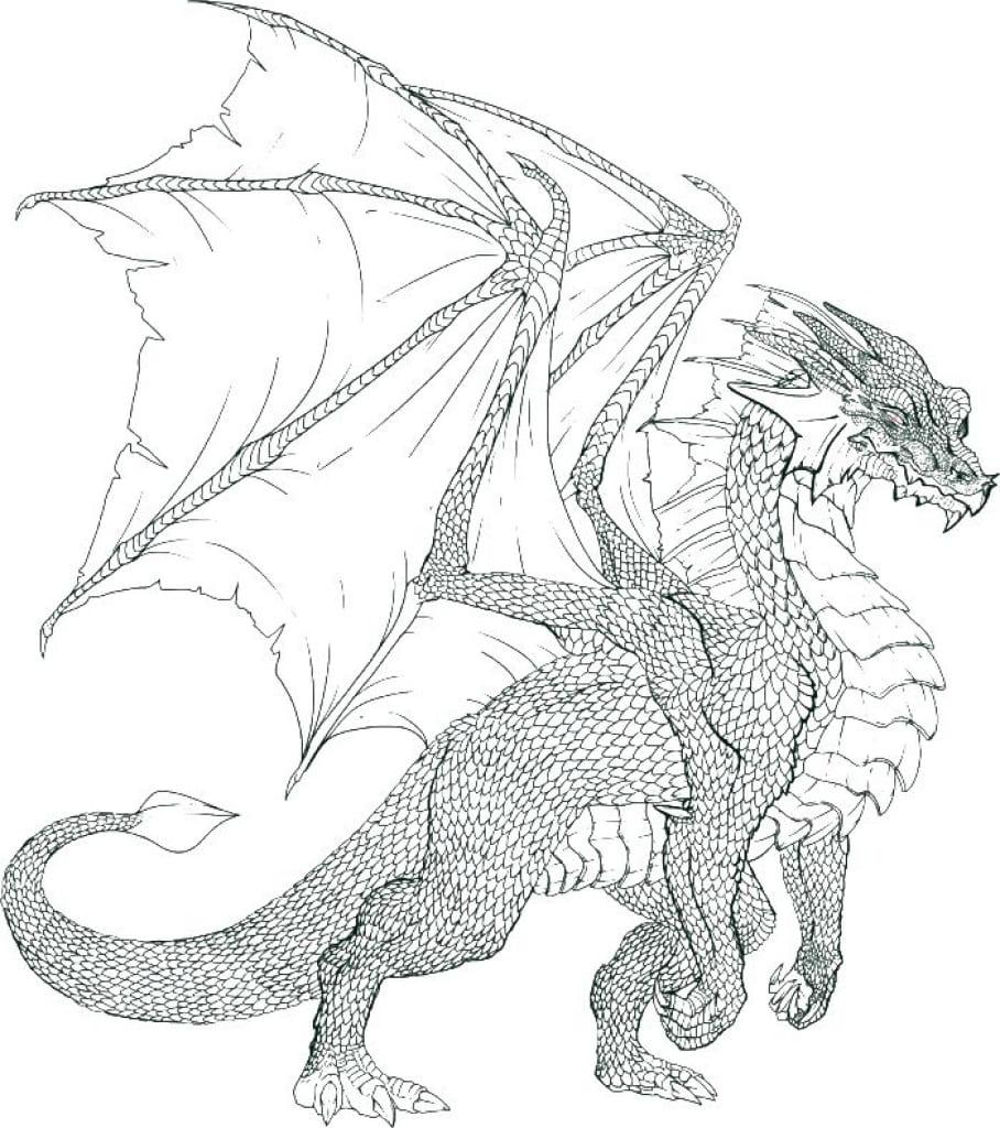 Drachen Ausmalbilder. 7 Schwarz-Weiß-Bilder kostenlos