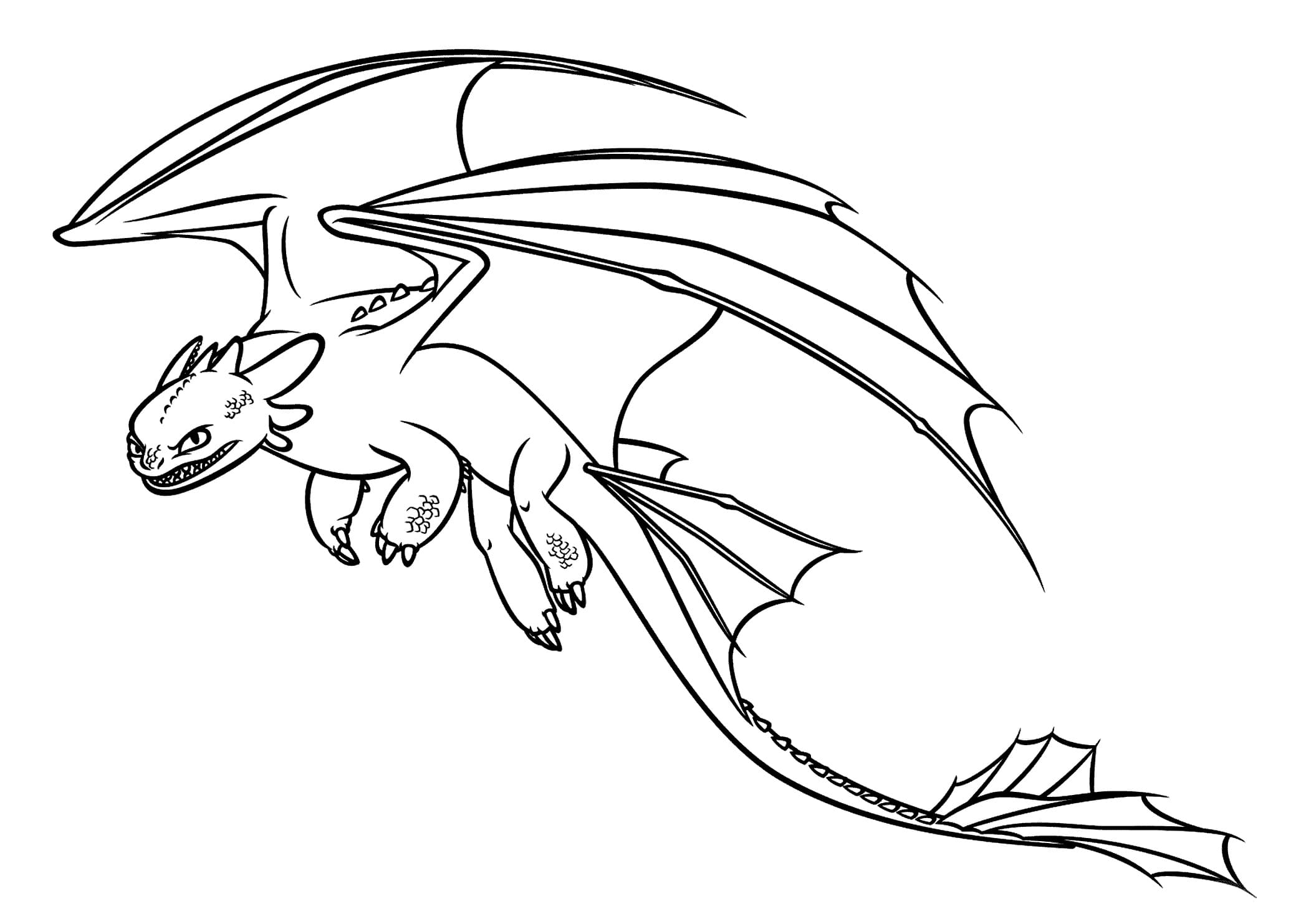 Coloring Pages of Dragons. 100 Black and White Images for Free