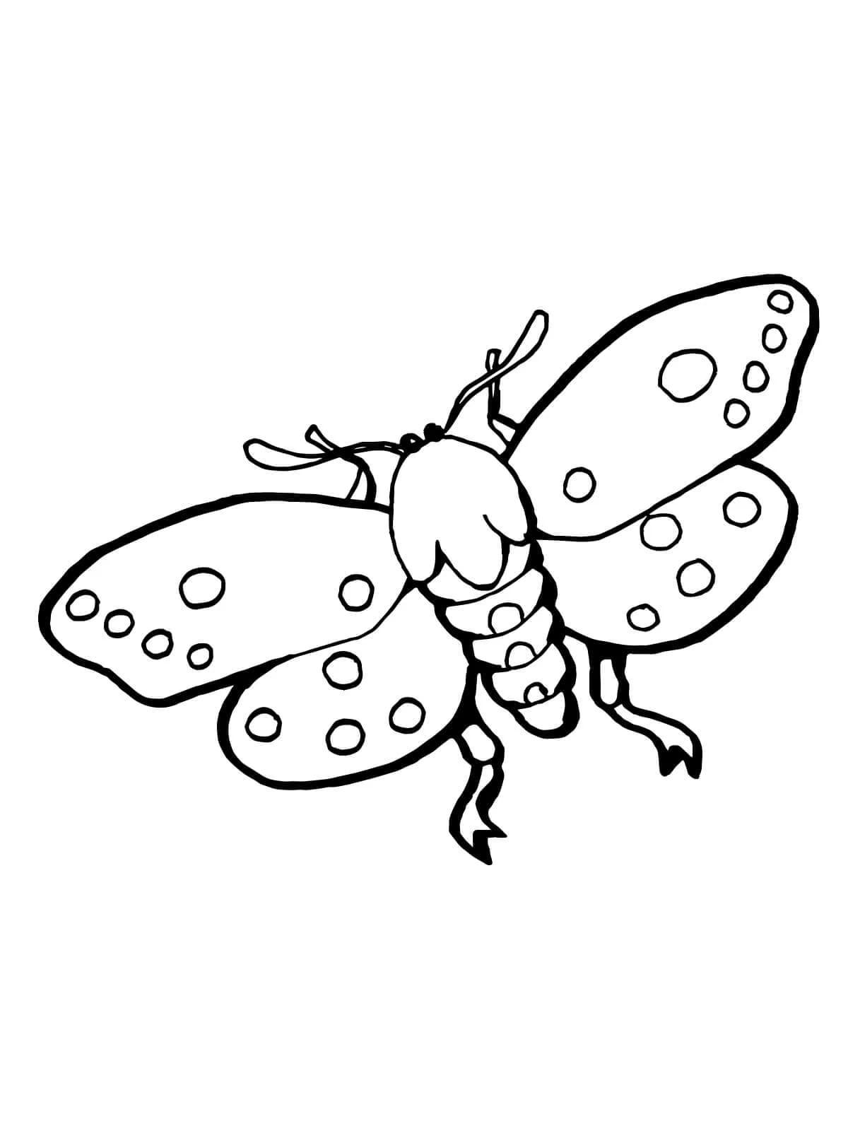 Раскраски насекомых для детей. Распечатайте бесплатно!