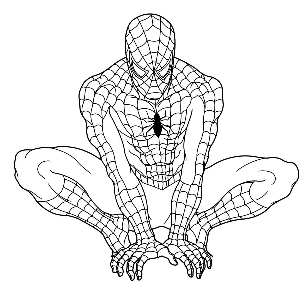 картинки разукрашки человека паука порода