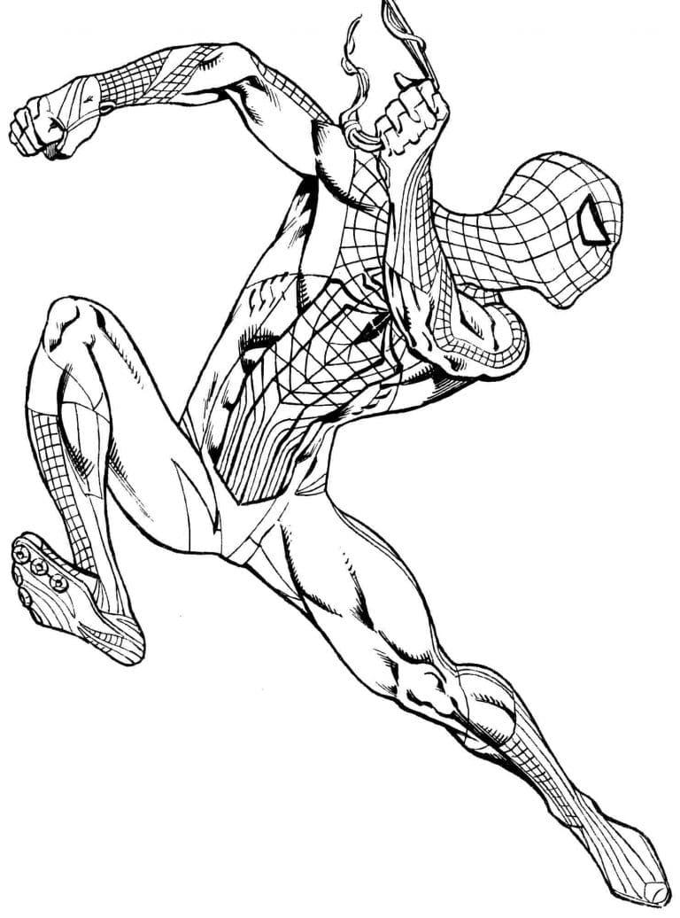 сегодня рисунки человек паук раскраска тракт