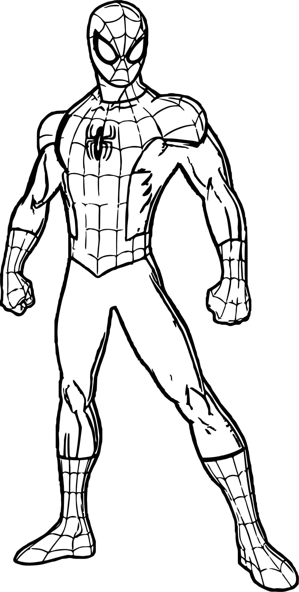 Раскраска человека паука для детей