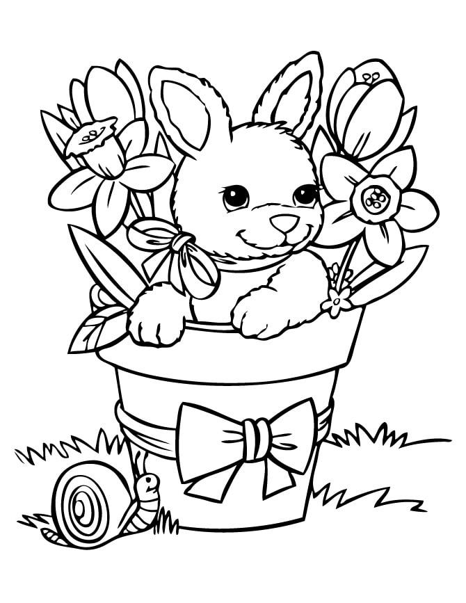 Раскраски зайцев для детей. 100 картинок для раскрашивания