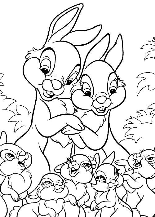 Dibujos de Liebres para Colorear. 100 imágenes para niños gratis