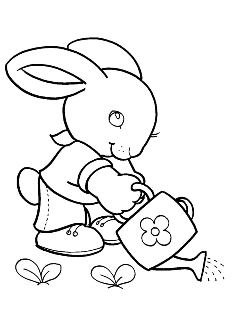 Desenhos de Lebre para colorir. 100 imagens grátis para crianças
