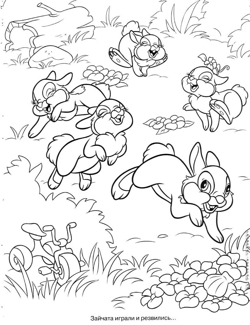 Картинки раскраски заяц в огороде