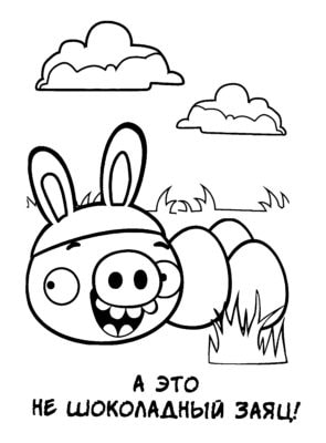 Раскраски Энгри Бердз (Angry Birds). Распечатайте онлайн!