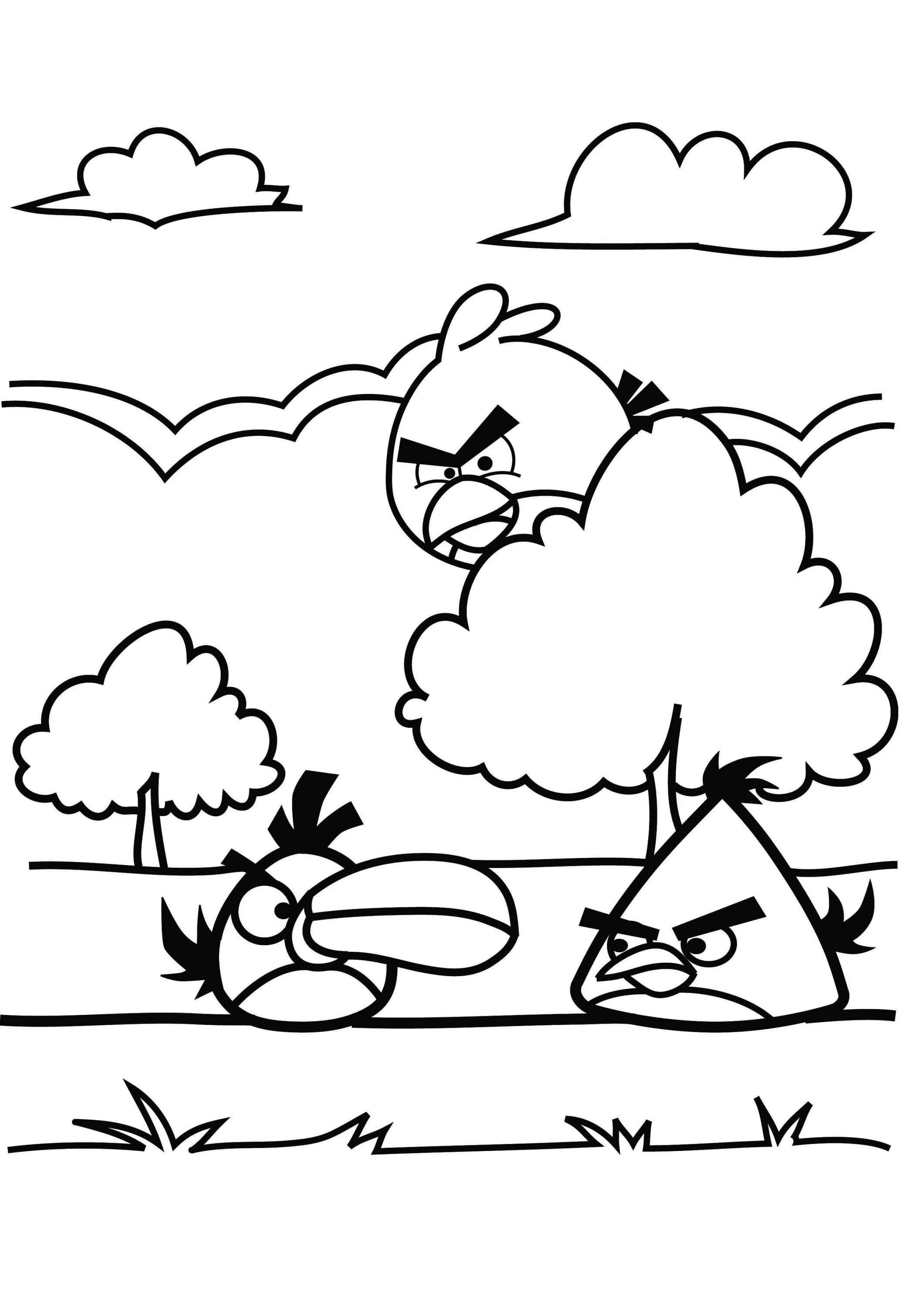 Angry Birds Seasons Coloring Pages - Coloring Home | 3000x2121
