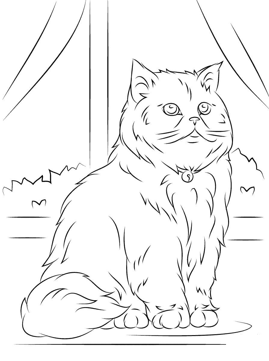Gatos Páginas Para Colorear. Imprime 100 imágenes gratis en blanco y negro gratis