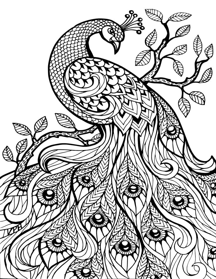 Complex Coloring Pages for 10- to 12-Year-Old Girls. Print ...